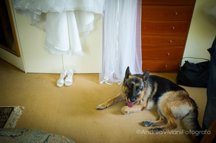 Wedding_Francesco_Vanessa-80